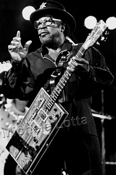 http://www.kalamu.com/bol/wp-content/content/images/bo%20diddley.JPG