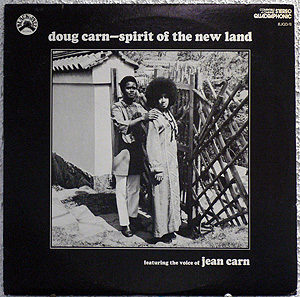 doug carn new land cover.jpg