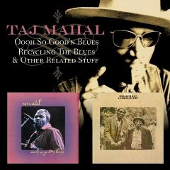 taj mahal recycling cover.jpg